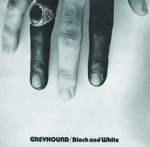 Greyhound - Black and White