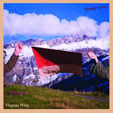 Review: Genre Hopping: Arty indie-pop - Virginia Wing - Ecstatic Arrow